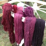 Skeins Dyed with Cochineal